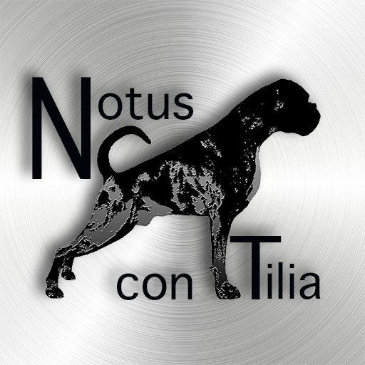 Notus con Tilia